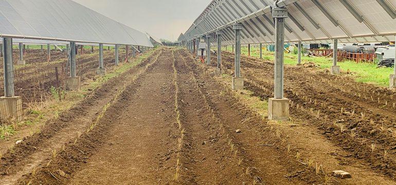 Photovoltaic Solar Panels - Mahindra Susten