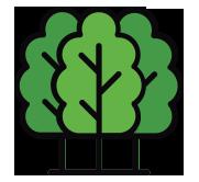 Cumulative Equivalent Trees Planted - Mahindra Susten